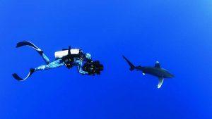 Life Saving Scuba Diving Equipment List 1
