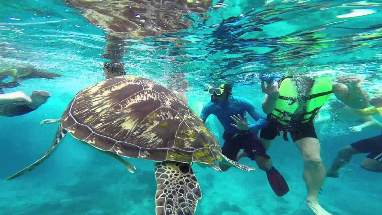 Surin Islands snorkeling and diving