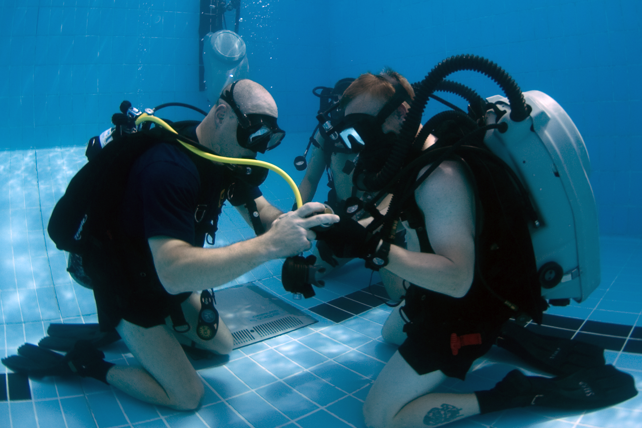 PADI vs NAUI - Types of Scuba Certifications - Scuba Diving Lovers