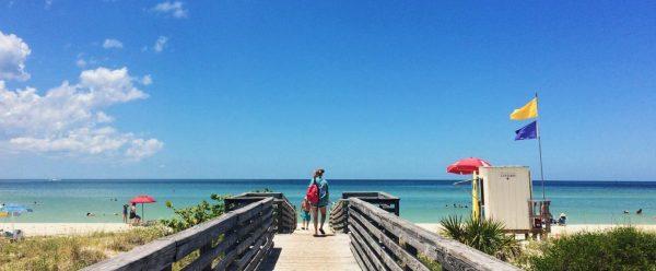 Honeymoon Island in Clearwater Florida