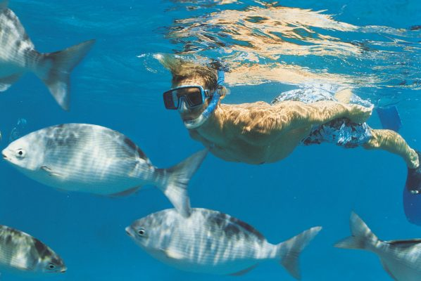 Jupiter Beach Snorkeling