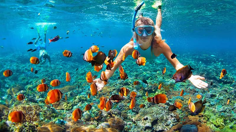 12 Snorkeling vs Scuba Diving Differences 1