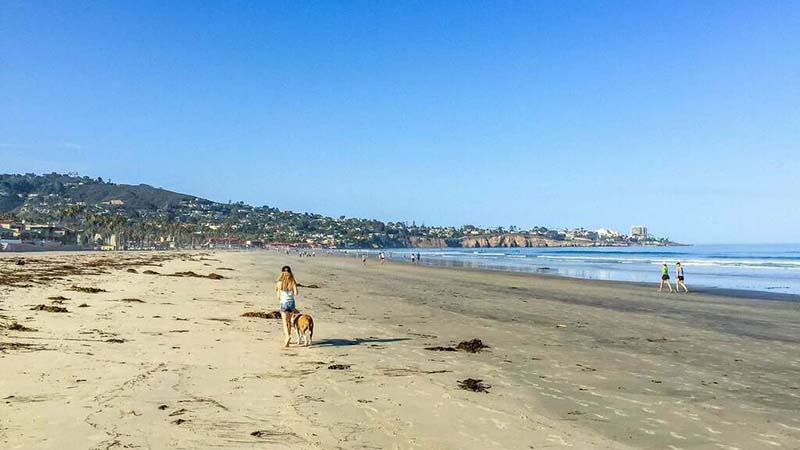 15 Best Beaches In San Diego For Families