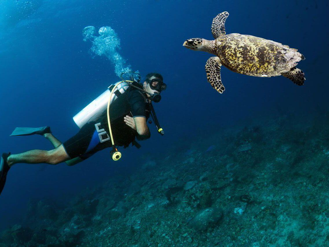 Snorkeling and scuba diving health risks