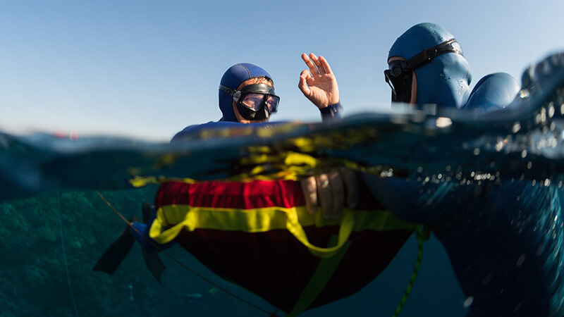 Divers should Do For Their Own Safety