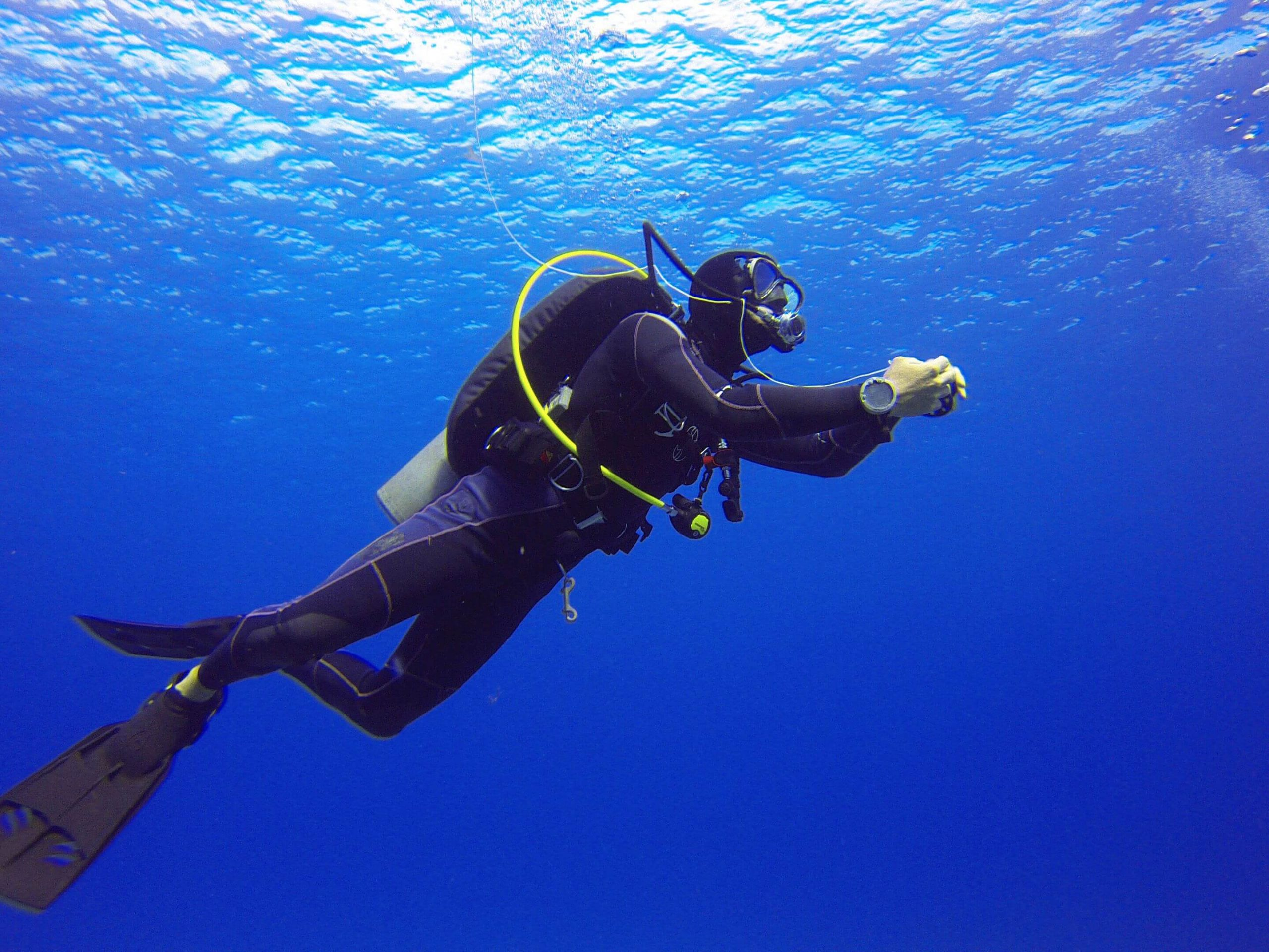 Not diving more often