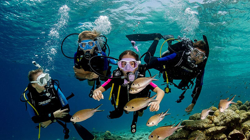 3 Best Places To Scuba Dive