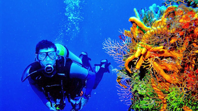 4 Scuba Diving Holiday Destinations For Families