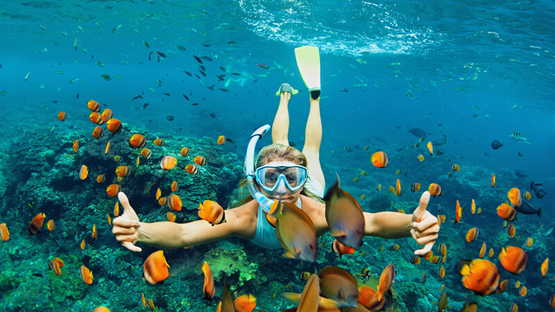 Choose a reliable snorkel