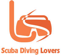 Scuba Diving Lovers