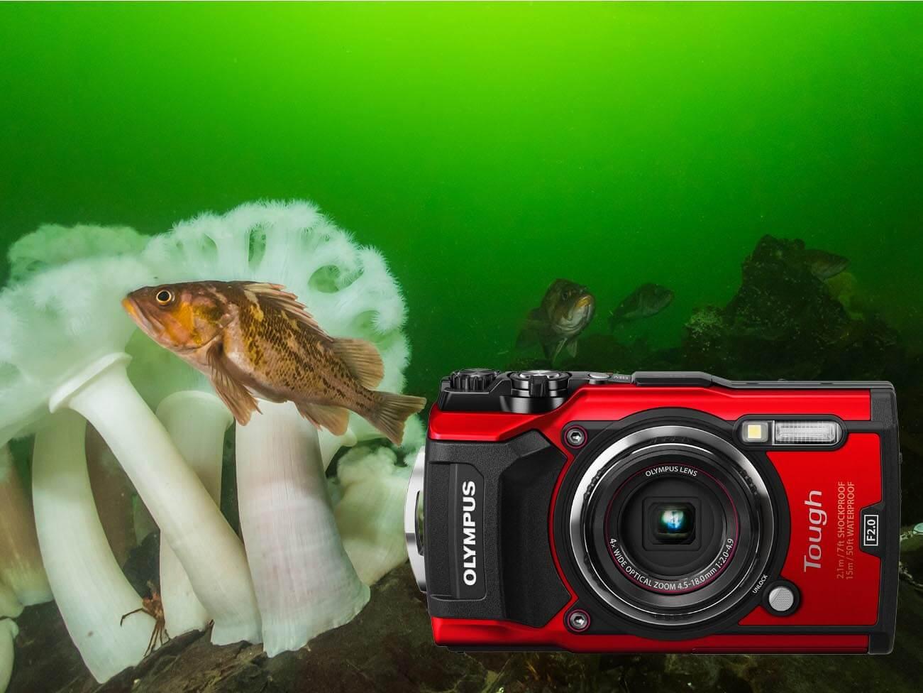 Underwater modes