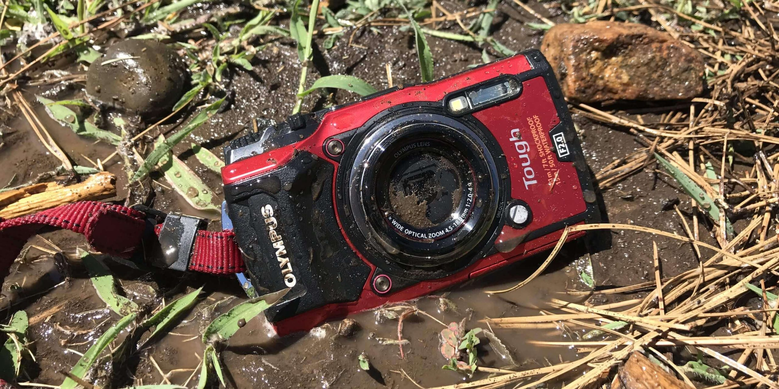 Who should own this camera