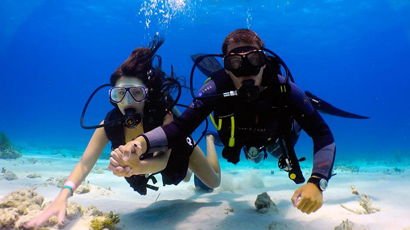 What to Do in Riviera Maya Mexico? - Reef Diving
