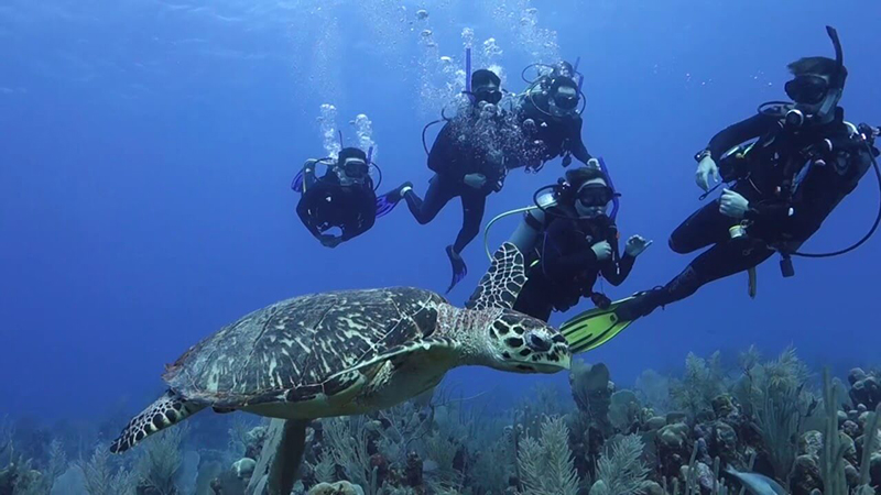 Scuba Diving at Cancun Mexico