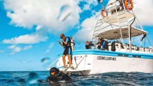 Ultimate Weekend Getaway with Scuba Diving Riviera Maya Mexico 1