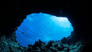 A quick guide to scuba diving holidays in Fort Lauderdale
