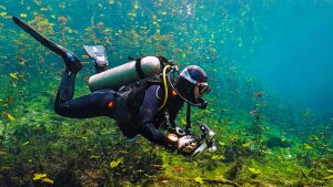 A Quick Guide to Scuba Diving in Crystal River Florida