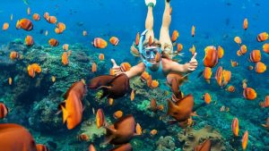 A quick guide to the Scuba Diving West Palm Beach